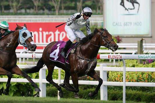 Alibi (Glen Boss) holds his rivals at bay in the Stewards' Cup at Kranji. Photo: Singapore Turf Club.